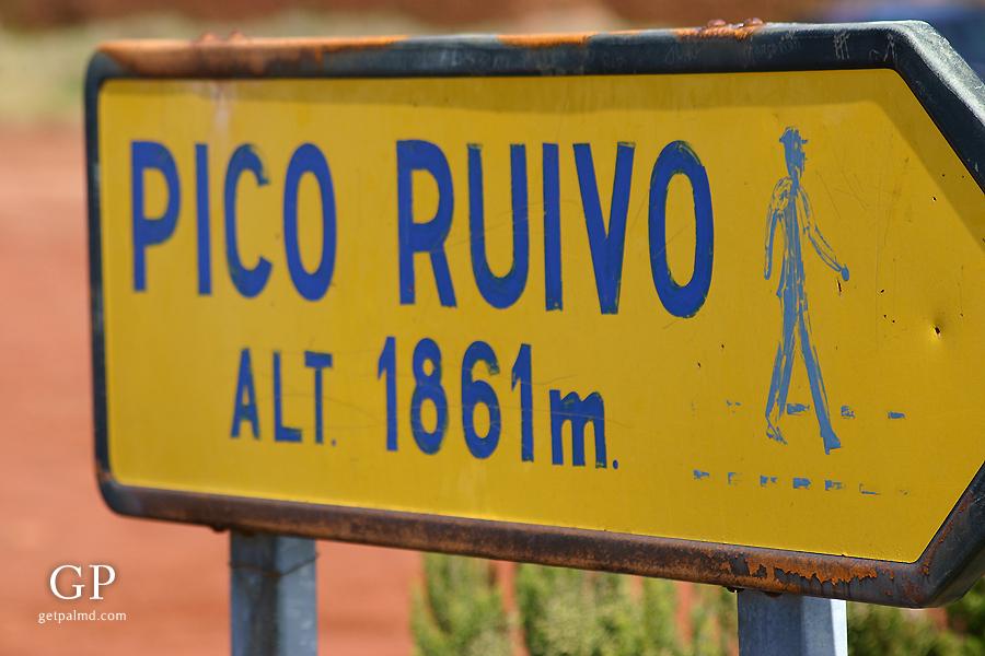 PicoRuivo04