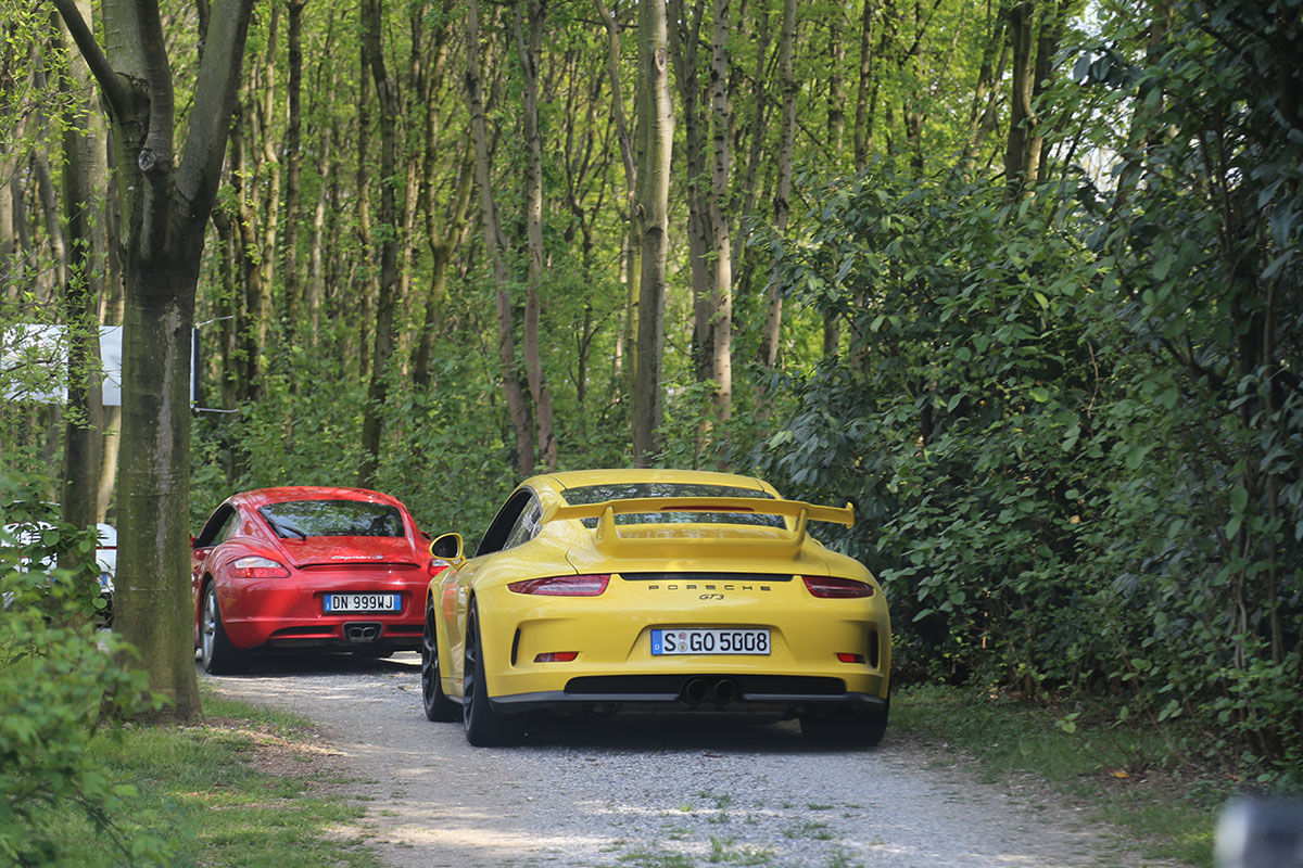 Cayman and GT3