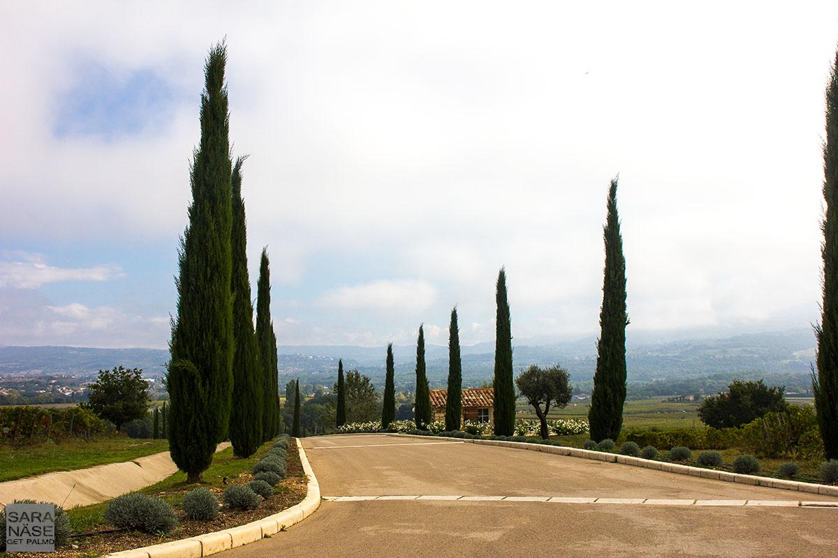La Coquillade driveway