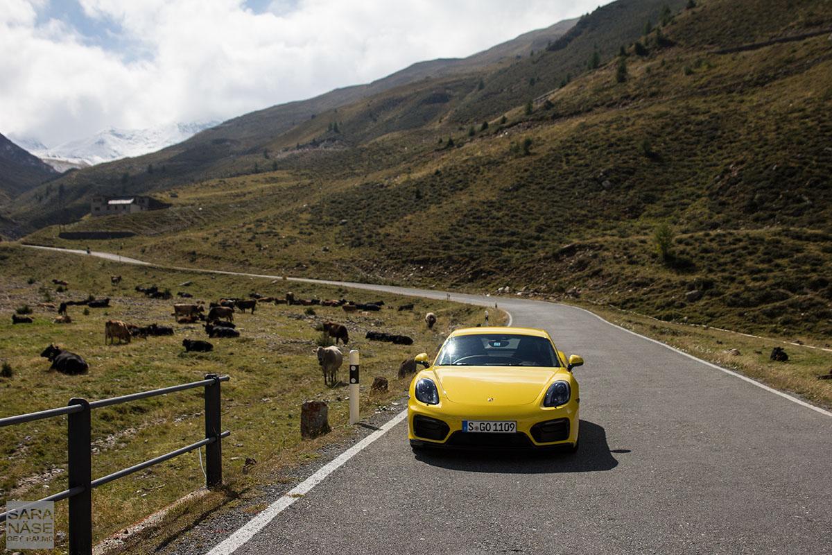 Porsche Cayman Passo Umbrail