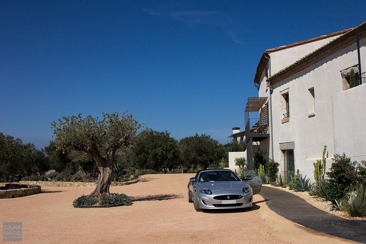 Mas Lazuli Jaguar Spain