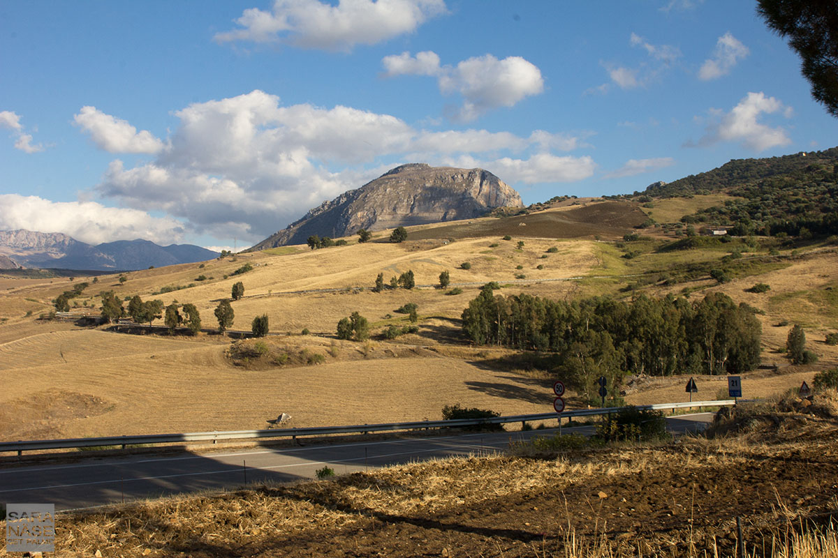 Targa Florio landscape