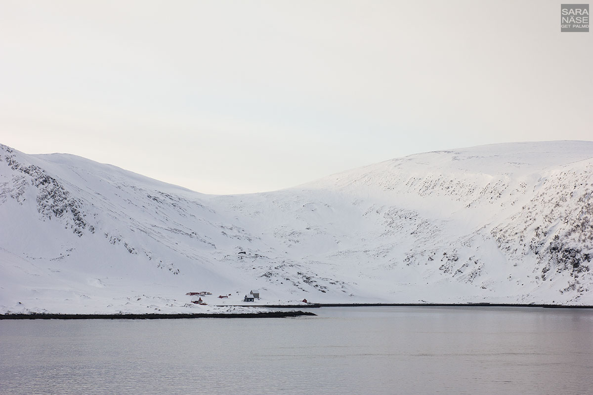 Hurtigruten-winter