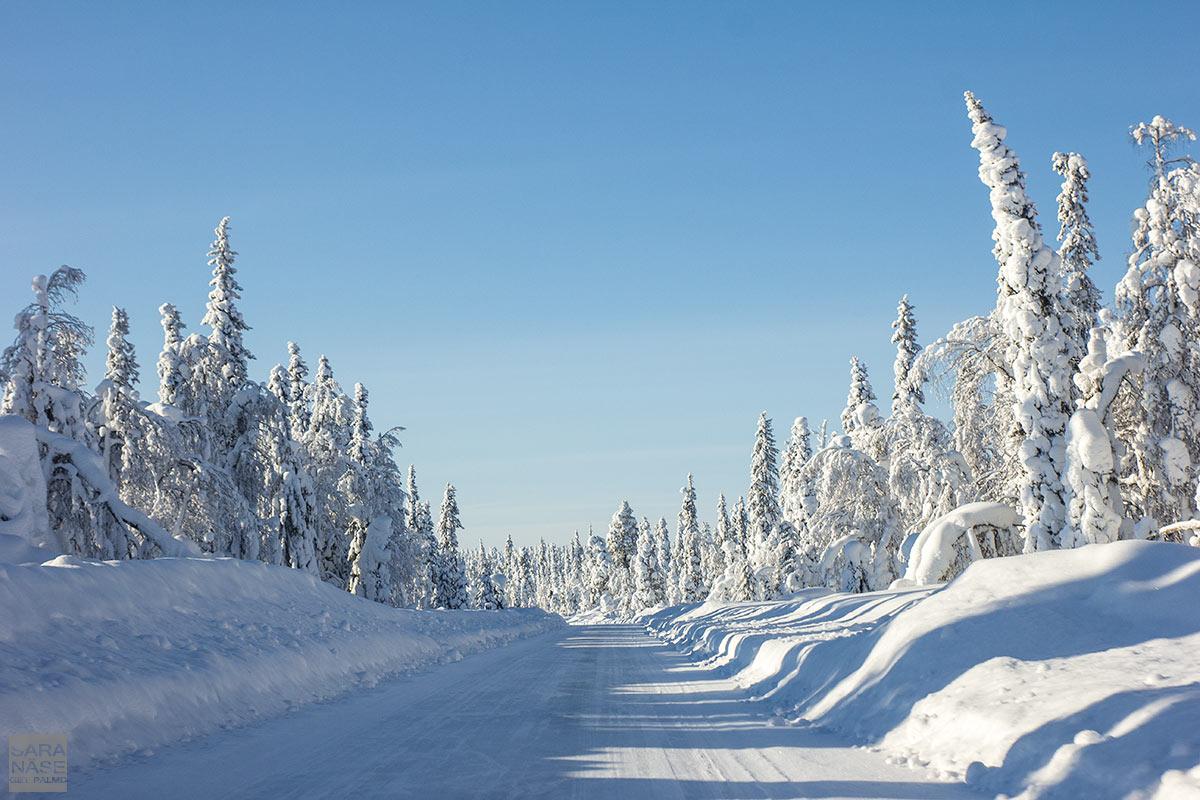 White-snow-road