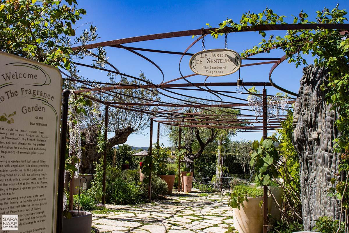 Le-Mas-de-Pierre-garden