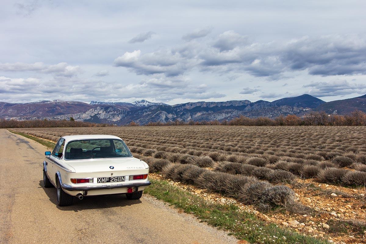 Lavender route in Provence - Verdon / Valensole - Classic car driving tour