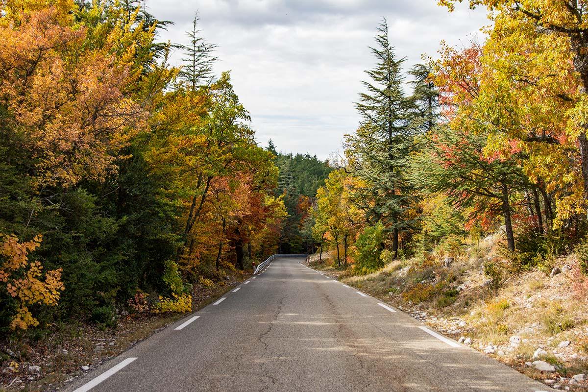 Mont Ventoux autumn